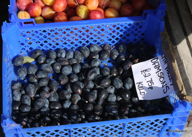 damsons picked locally