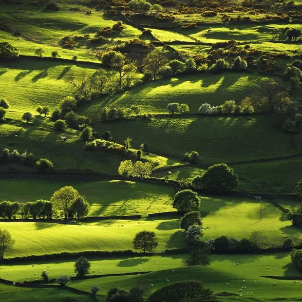 The Lyth Valley