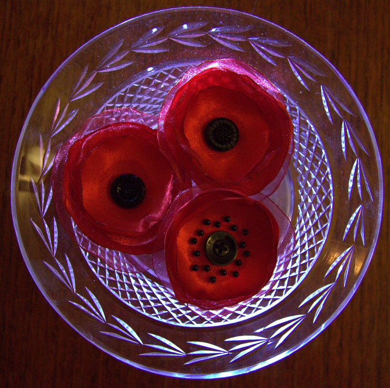 poppies for a bra challenge
