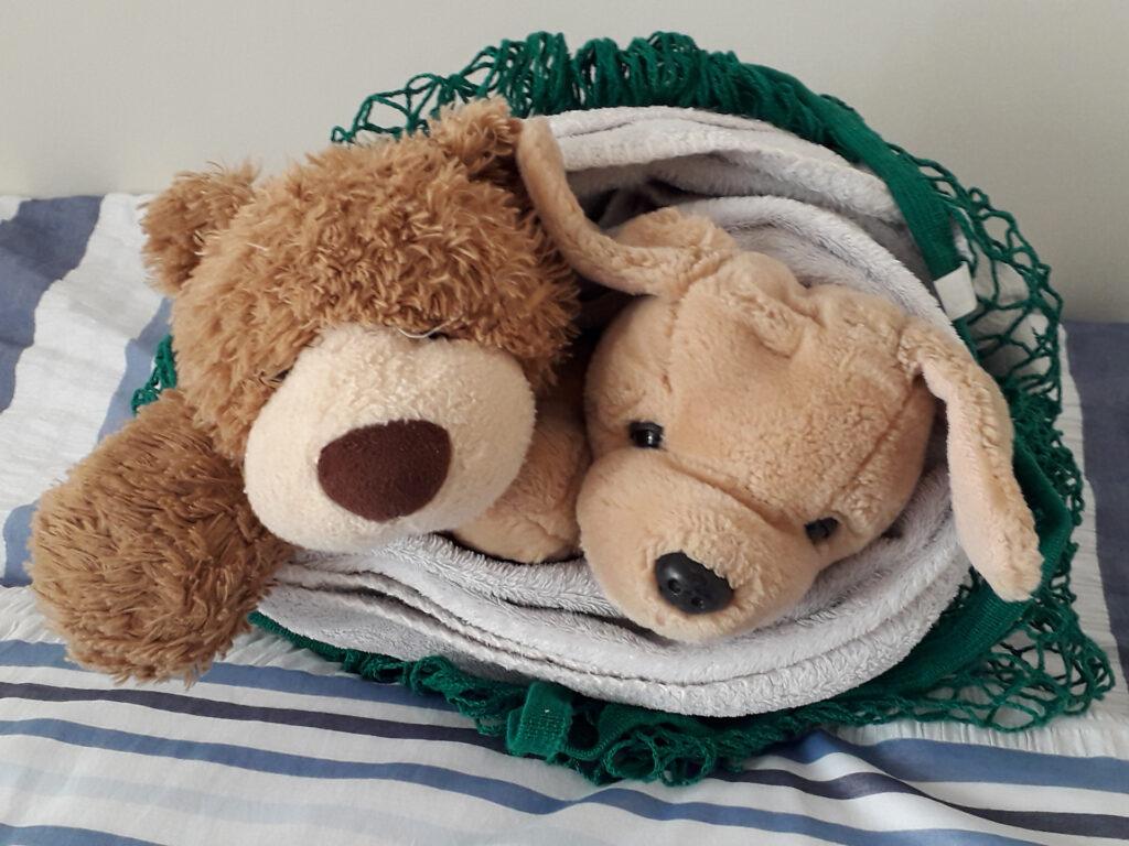 Monty and Scruffy little bear